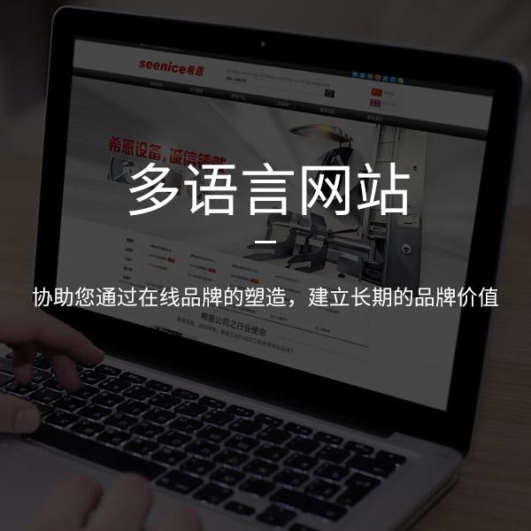 多语言网站