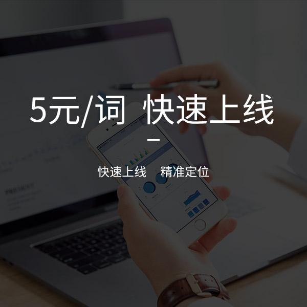 5元/词快上线